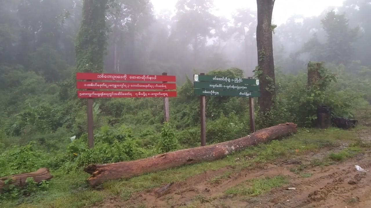 မြန်မာနိုင်ငံသစ်တောအသင်းမှ ပခုက္ကူခရိုင်သို့သွားရောက်သည့် ခရီးစဉ်